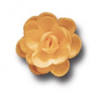 Розы малые сложные абрикосовые (40мм)