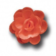 Розы малые сложные красные