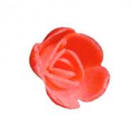 Розы малые абрикосовые (25мм)
