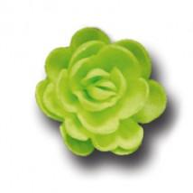Розы малые сложные салатовые (40мм)